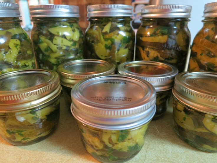 pickled zucchini in olive oil (4/4)