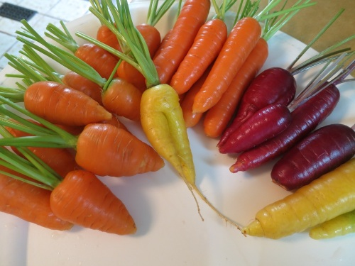 carrotsalad2