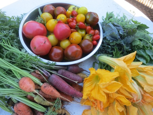 harvest2014a